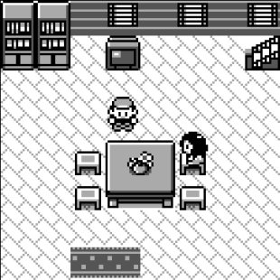 Pokemon House
